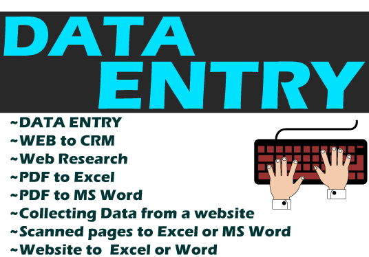 I will professionally   data entry and data entry job