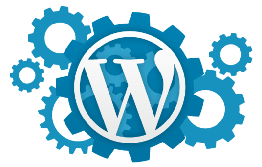 I will build epic and powerful professional WordPress website