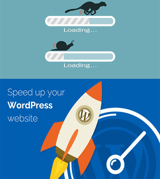 I will Speed Up WordPress Website Speed Within 24 Hours