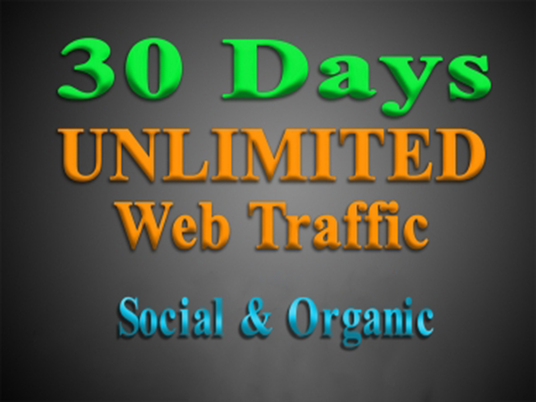 I will deliver unlimited targeted WEB TRAFFIC for 30 days