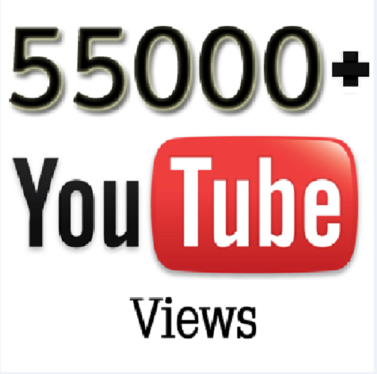 I will provide you high quality 55,000+ YouTube Video views