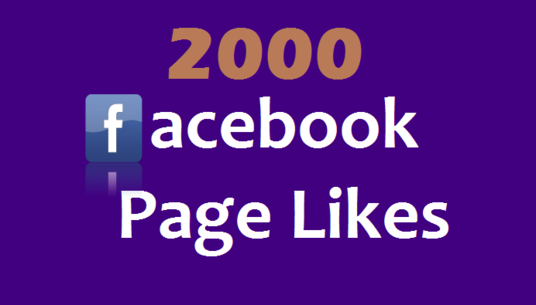 I will add 2000 permanent Facebook page likes