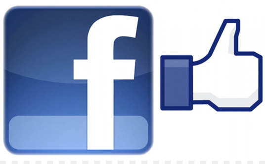 I will Give You 1000 Non Drop Facebook Fanpage like