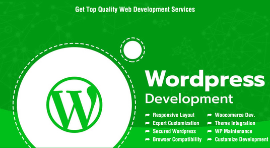 I will develop and design responsive wordpress website