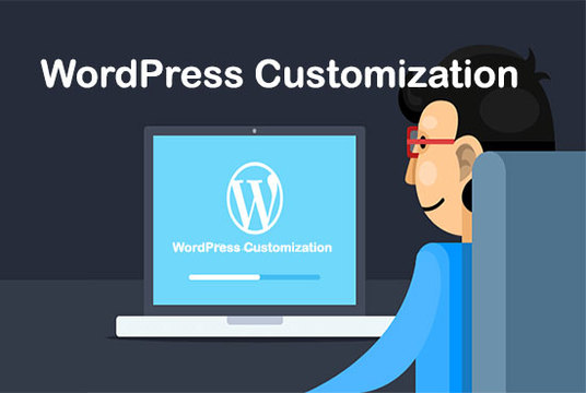 I will Install And Customize Wordpress Website Or Theme