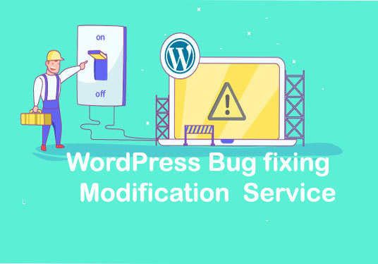 I will Modify your WordPress theme within 24 hour