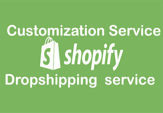 I will Build A Professional Shopify Store For Your Business