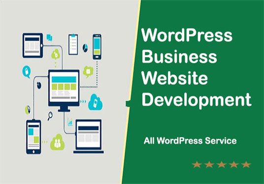 I will Create A Clean And Modern Wordpress Website