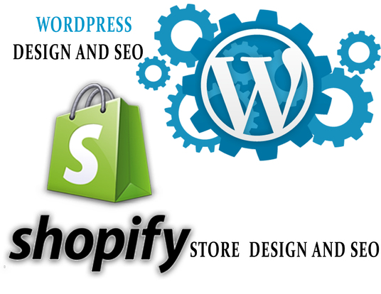 I will Do On Page Seo For Your Shopify store Or Wordpress Website