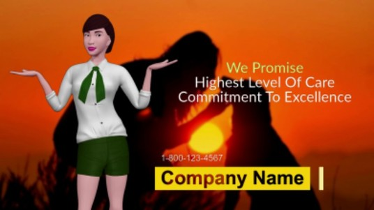I will create a professional animated business promotional video