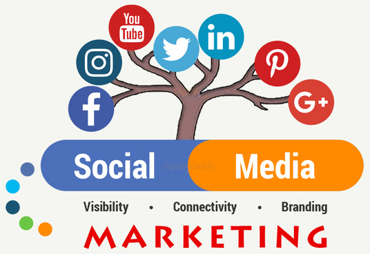 I will set up and manage your Social Media Accounts
