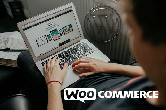 I will Build A Top Notch Woocommerce Website
