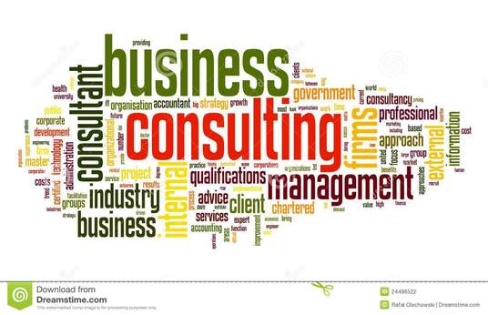 I will Provide professional  business management advice for your business