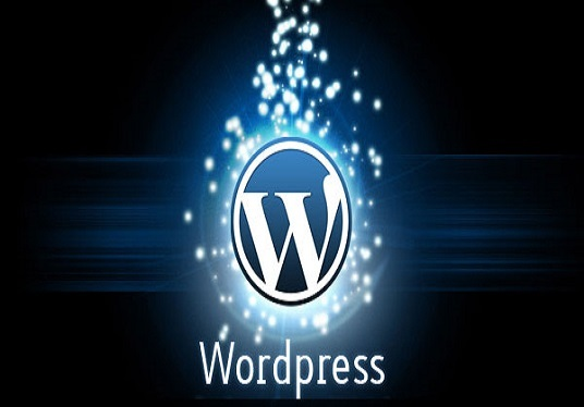 install WordPress and theme and Customization as like demo