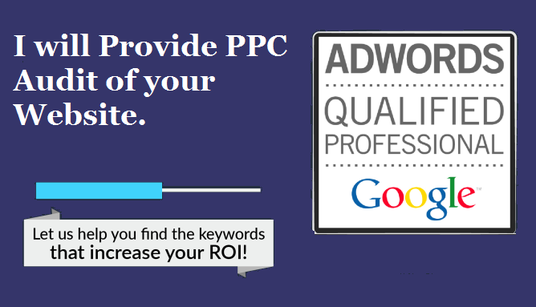 I will provide  Pay per click  Audit