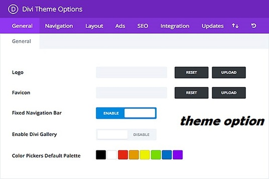 I will create and customize your website fluently with divi theme
