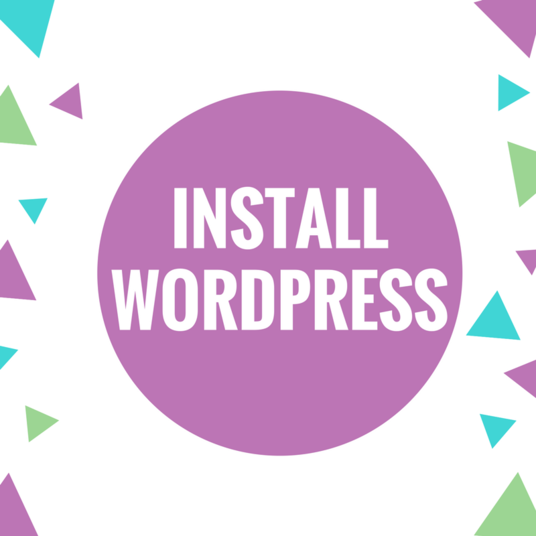 I will install WordPress , Setup theme for your website