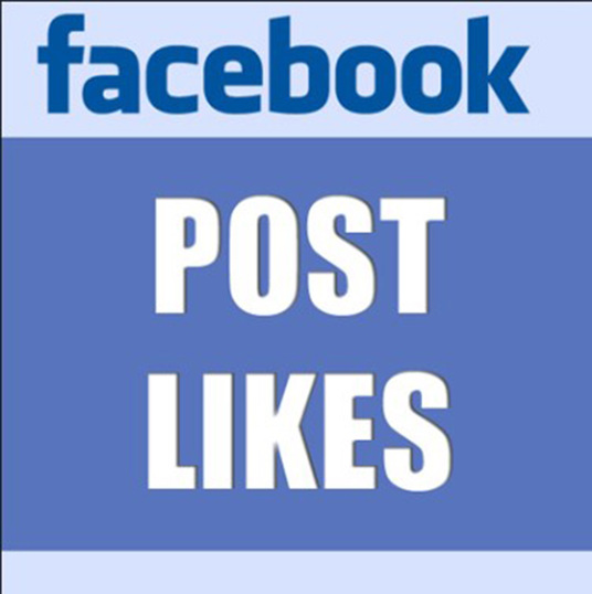 I will Give You 500 Non Drop Facebook  Post,Photo,video,Album Like