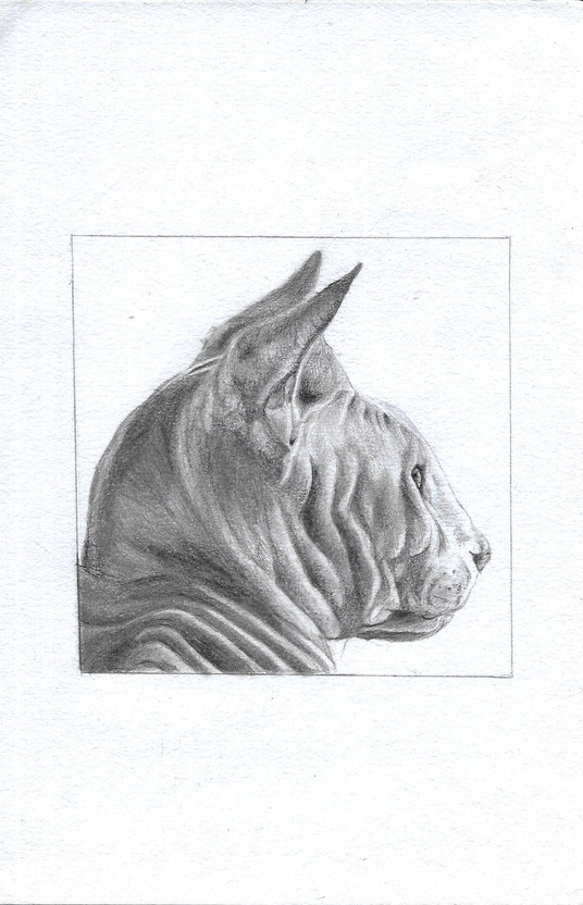 I will create an A4 photorealistic piece of artwork of any portrait from pencil!