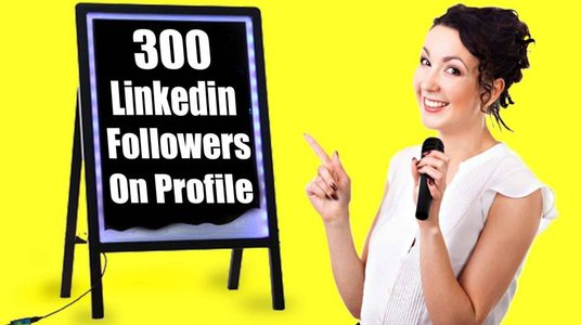 I will deliver 300 LinkedIn Followers