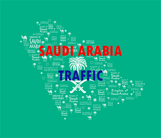 I will Provide Website Traffic [ SAUDI ARABIA ]