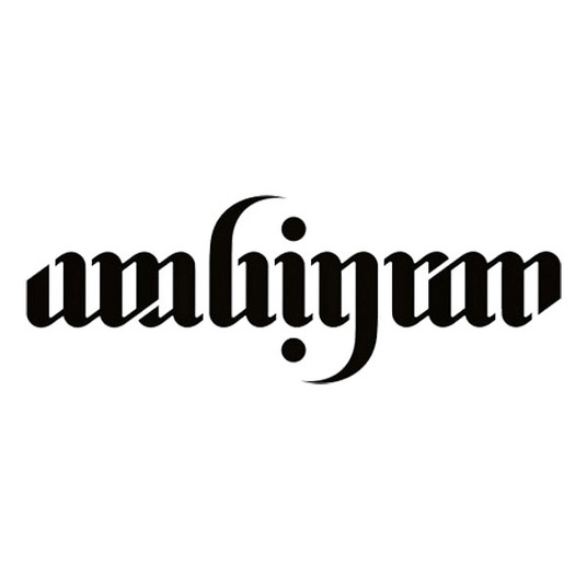 I will create an ambigram in illustrator
