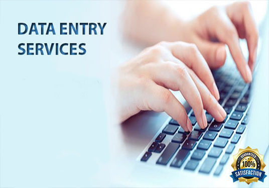 I will Provide You All Data Entry Services