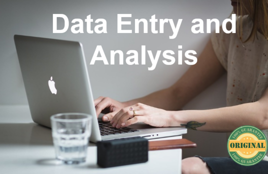 I will do data Entry and data Analysis