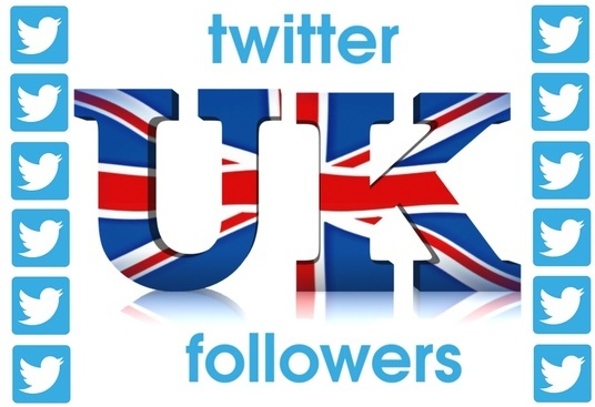 I will provide you 100 UK twitter followers