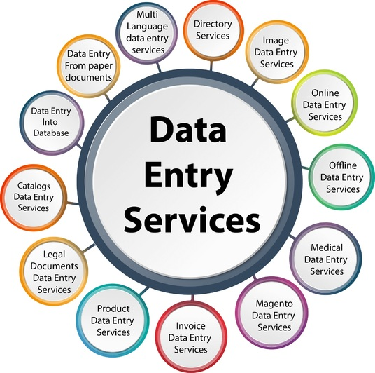 I will Enter All Type of data and advice in WordPress