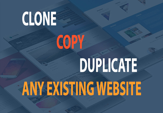 I will Copy Or Duplicate Any Existing Website