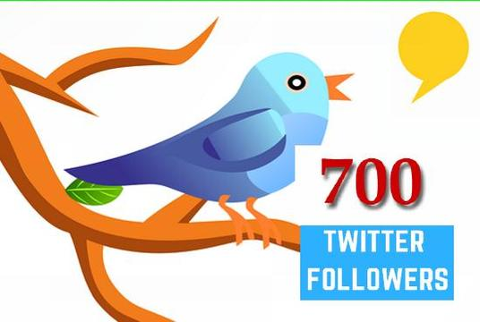 I will Provide You  Very Active 700 Real Twitter Followers