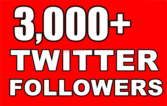 I will 3,000+ High Quality Twitter Followers