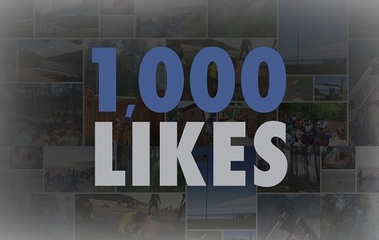 I will provide 1000 Facebook Fanpage like OR 1000 post like
