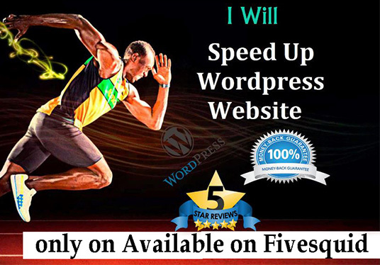 I will Speed Up Wordpress Website Within 24 Hours