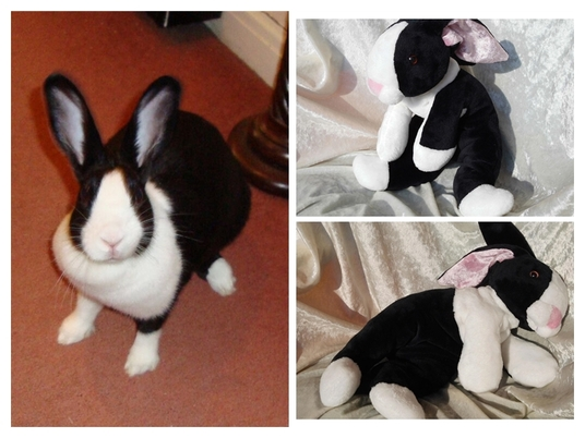 I will create a small BABY RABBIT PLUSH version of YOUR PET RABBIT with individual markings FROM