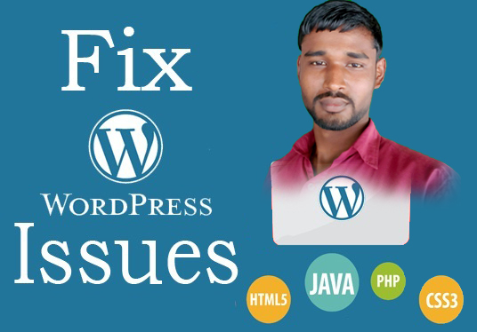 I will Fix WordPress Issue, WordPress Bugs, Fix WordPress Error, Fix Problem