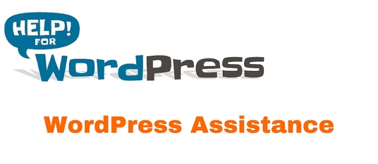 I will your wordpress assistance for an hour