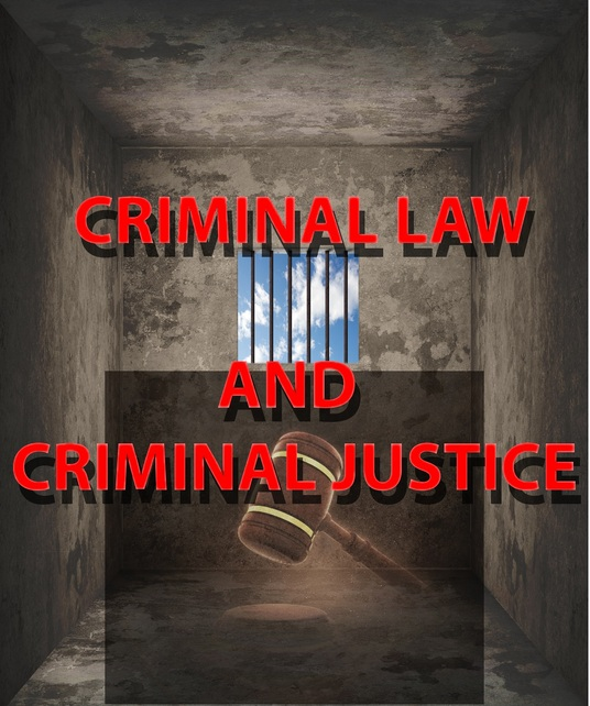 I will research on criminology, criminal justice, criminal law and law enforcement (500 words)