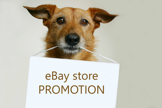 I will Fly Your Ebay Business Marketing Promotion To The Next Level