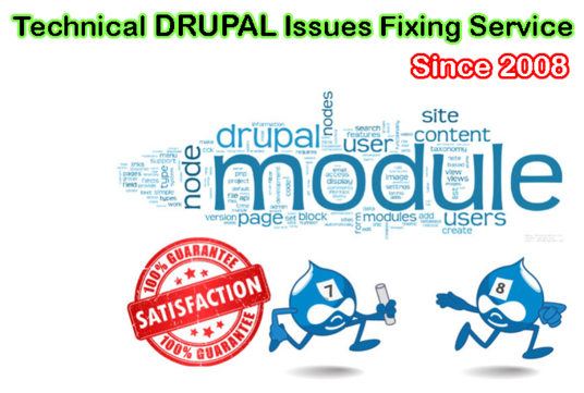 I will Fix Issues On Drupal Website Any Version