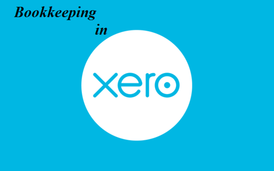 do bookkeeping using QuickBooks online, Xero, Wave  Accounting and excel