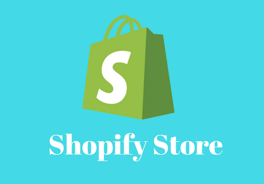 I will create a Shopify Store for you