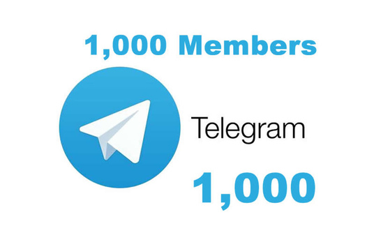 I will Add 100 Real High-Quality Telegram Channel Members