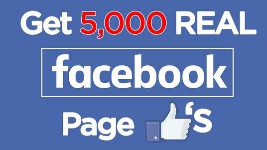 I will Give you Non-Drop 500 Real Fan Pages Likes