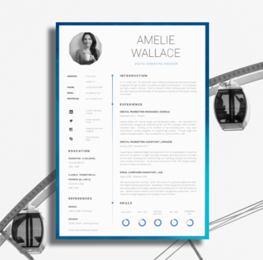 create your eye-catching CV within 48 hours