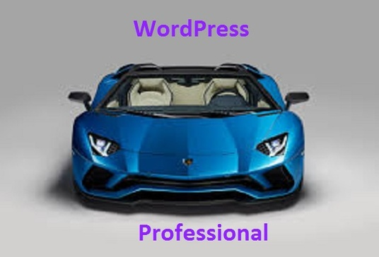 I will create WordPress website as professional by cms WordPress