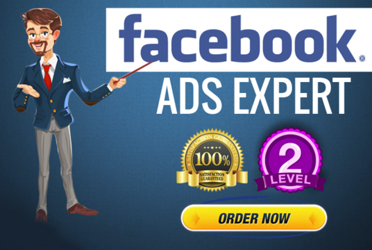 I will Setup And Optimize Facebook Ads With Targeted Audience