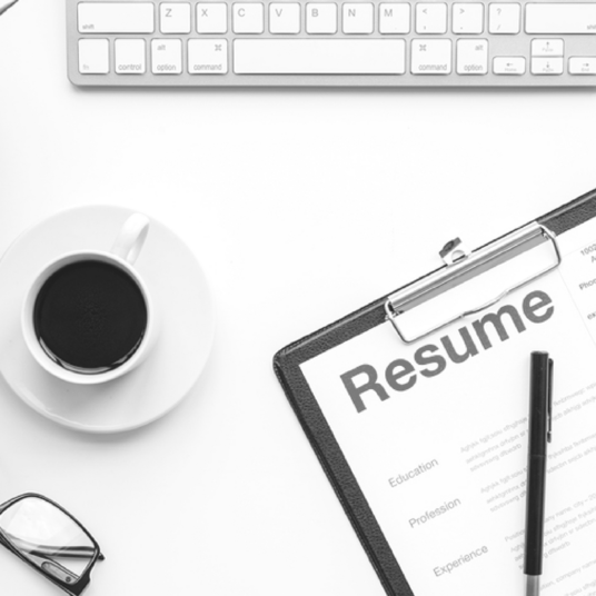 I will create your CV within 24 hours