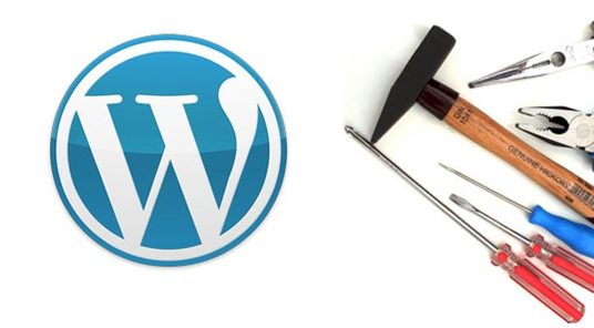 Fix your WordPress problems or errors or issues in 24 hrs